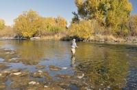 Autumn_Lower_River.jpg