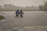 Barker_in_the_Rain.jpg