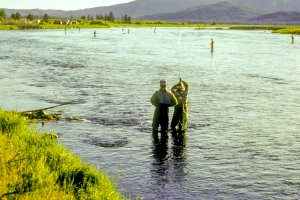 Fishing with Company