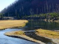 Madison_Yellowstone_P_2.JPG