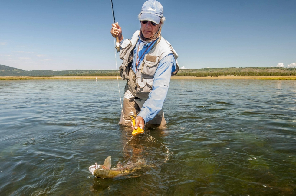 South fork snake river fly fishing report best fork 2017 for Best fishing in idaho
