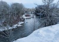 Snow_Lower_HF.jpg