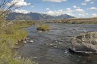 Upstream_3_Dollar_Bridge2.jpg