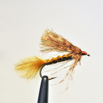Lawson's Brown Drake Emerger
