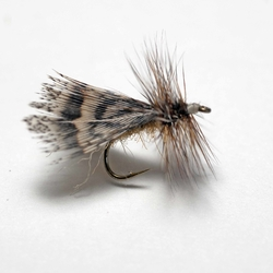 Lawson's Spent Partridge Caddis